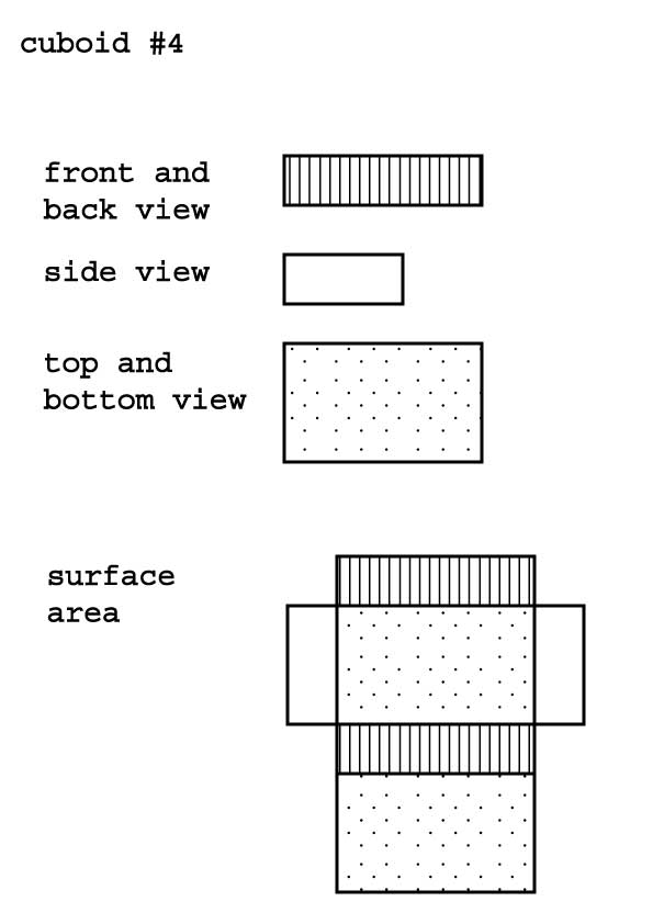 Drawing of the different views and foldout of surface area of a cuboid